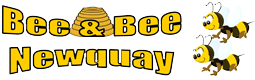 Bed and Breakfast Newquay Cornwall