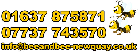 Bee and Bee Bed & Breakfast Newquay Cornwall